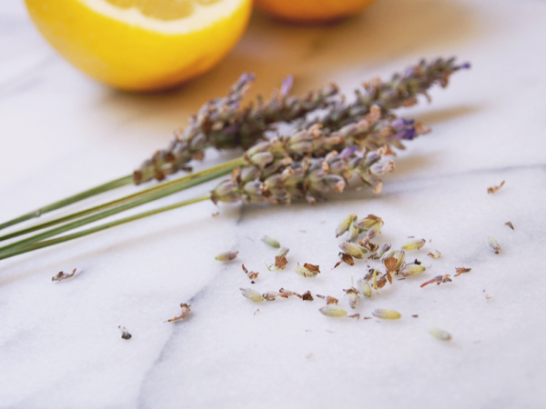 Lemons and Lavender | Dressed In Orange