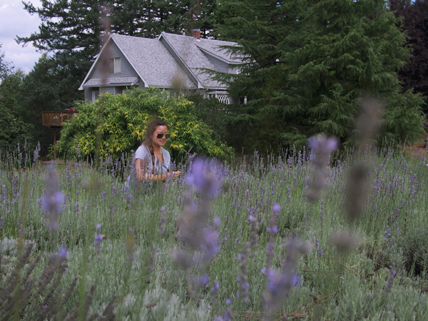 Lavender farm, Corbett, OR
